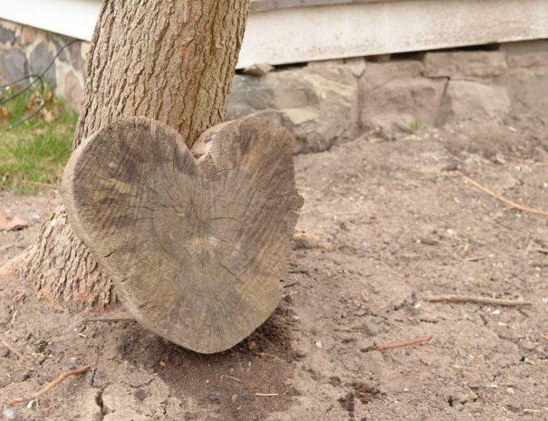 Hart shaped wood